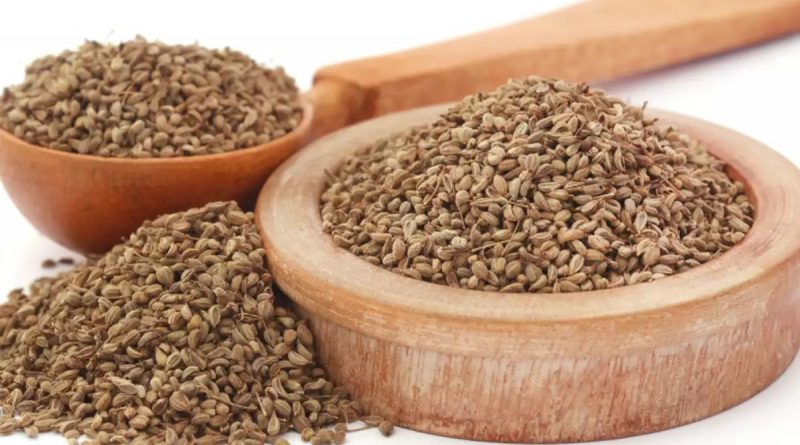 Omam ,Ajwain ,Oregano , staple herb,annaimadi.com, omam gives soothing effect,herb aids sleep,digestive aid, relieves abdominal discomfort, omam for indigestion and antiseptic,omam kasaayam after heavy meal,benefits of omam,medicinal herb