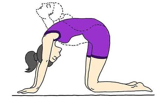marjariasana,annaimadi.com,yogasana,ypga for backpain,marjari aasana for neck pain,மர்ஜாரி ஆசனம் செய்யும் முறை